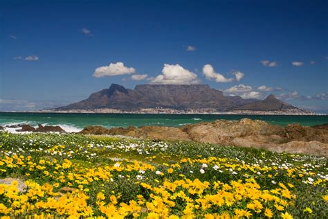 Table Mountain South Africa by Table Mountain Cape Town Tips For Your Visit To South Africa