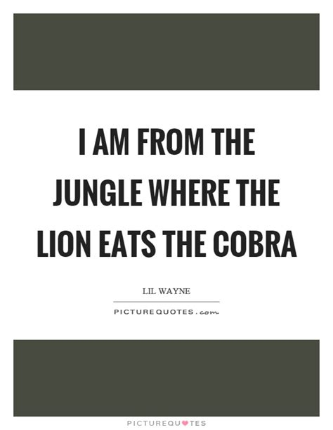 the jungle quotes jungle quotes jungle sayings jungle picture quotes