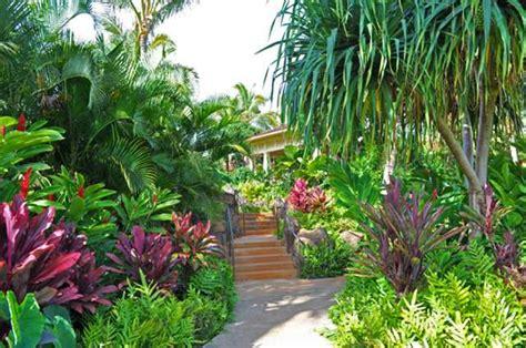 giardino tropicale come arredare casa con giardino idee consigli mobili