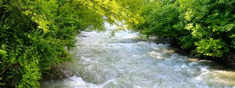 dachigam national park  srinagar entry fee