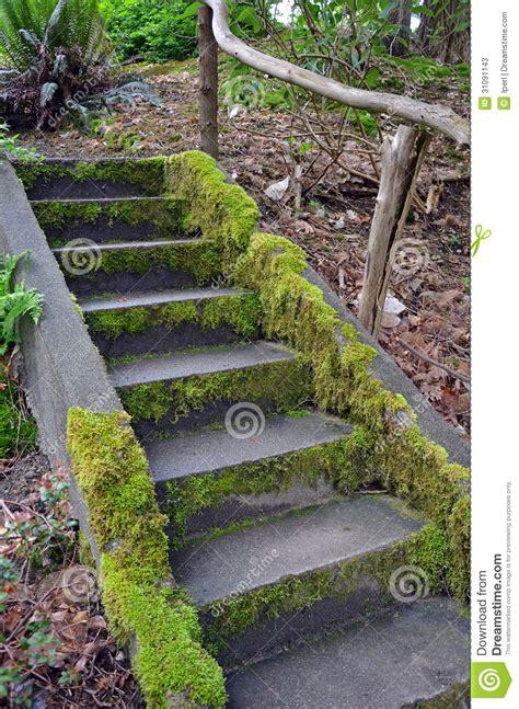 treppe im garten treppen im garten haus design ideen