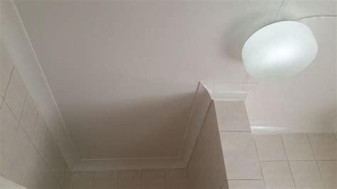 mould remover bathroom bathroom mould mold mildew removal randburg public ads south africa
