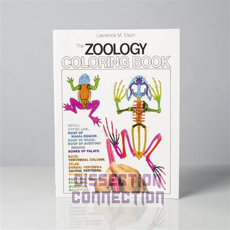 anatomy coloring in book elson s zoology anatomy colouring book 171 dissection connection