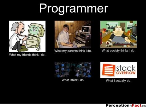 Meme Programmer - programmer what people think i do what i really do