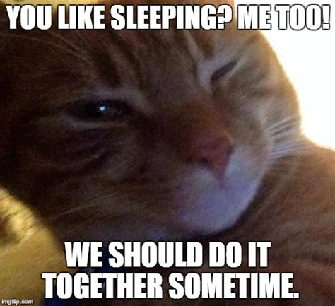 Flirtatious Memes - image gallery flirtatious memes