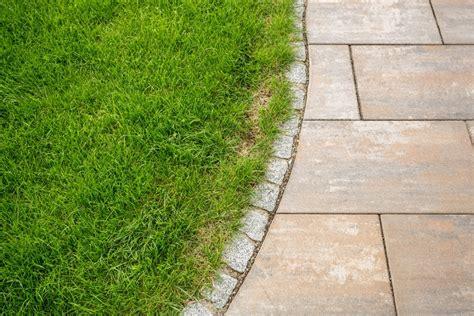 Mittel Gegen Klee Im Rasen by Mittel Gegen Klee Im Rasen Unkrautvernichter Mit