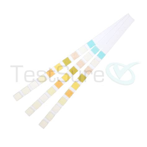 urine test urine test strips 10 parameter at home urinalysis test