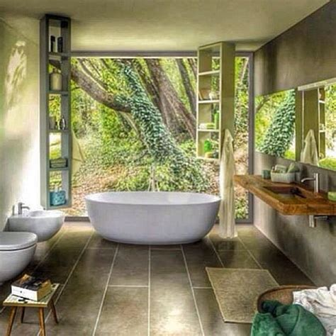 1000 images about rainforest house on pinterest home