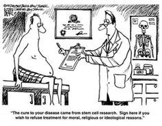 images  funny stem cell engineering