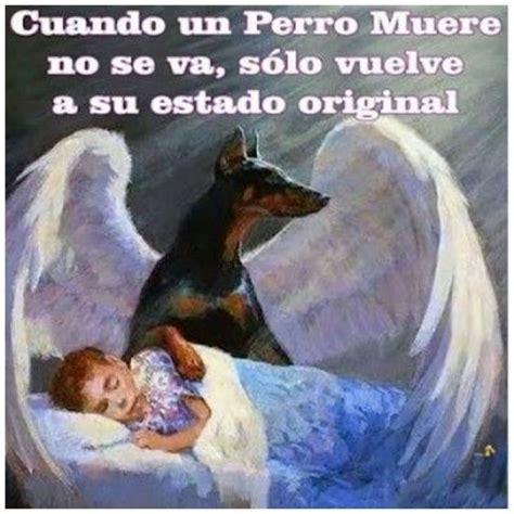 hombre perro se desata hombre perro 2 edition books best 25 died ideas on my died sad