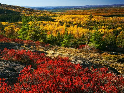 the best fall foliage drives in new and canada