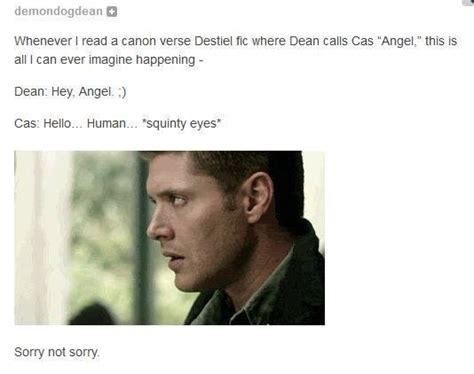Supernatural Castiel Memes - supernatural memes google search destiel pinterest