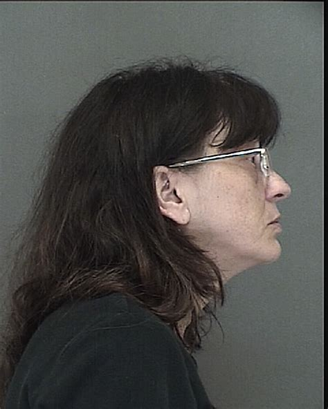 Green Bay Arrest Records Lou Elsen Inmate 2015 018421 Brown County Sheriff S Department Division