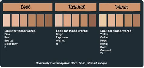 exquisite mua a tip to find your skin tone cool warm or neutral