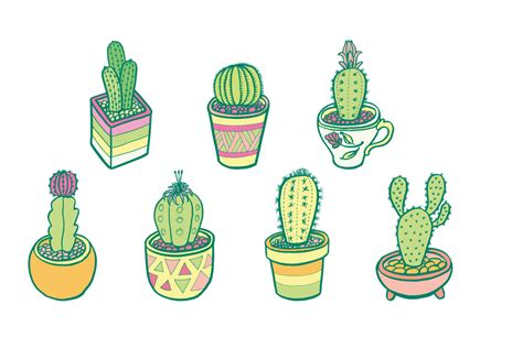 Design Collective cactus garden d2design illustration