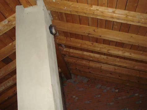 coibentazione soffitto interno coibentare soffitto dall interno casamia idea di immagine