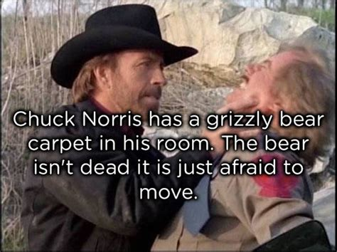 chuck norris best jokes chuck norris jokes others