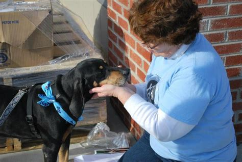 operation paws for homes nonprofit in alexandria va