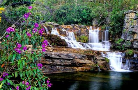 beautiful waterfalls with flowers most beautiful flowers with waterfalls inviting waterfall surrounding for beautiful and