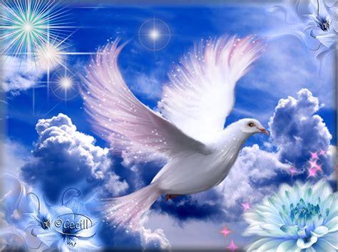 imagenes catolicas espiritu santo imagenes de espiritu santo newhairstylesformen2014 com