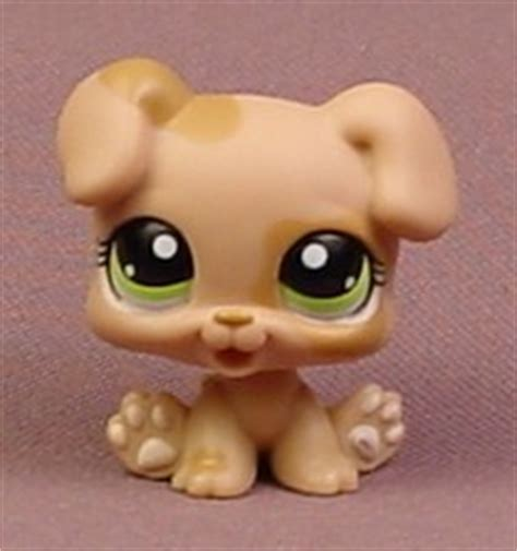 lps boxer puppy littlest pet shop 1353 light brown or baby boxer puppy with green pets