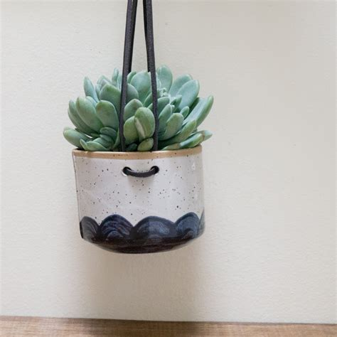 sale hanging wall planter for succulents and airplants blue