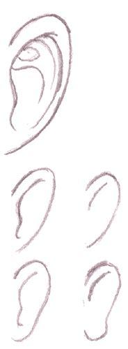 Anime Ears by Tutorials