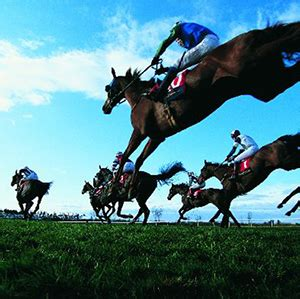 Of Liverpool Mba Modules by Senior Industry Figures Among Thoroughbred