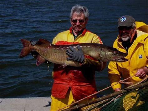 waneta lake schuyler county nys dept. of environmental