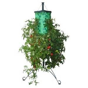 topsy turvy tomato planter topsy turvy tomato reviews and