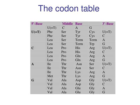 amino acid codon table ppt dna sequencing by the sanger method powerpoint
