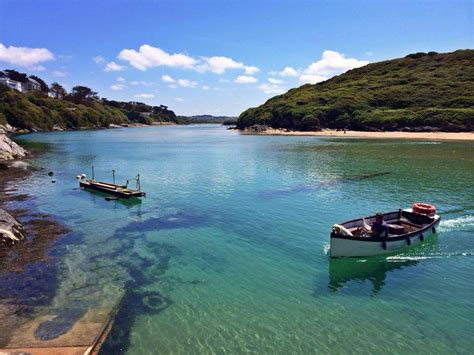 friendly beaches in ct our guide to the top ten friendly beaches in cornwall pawfect stays