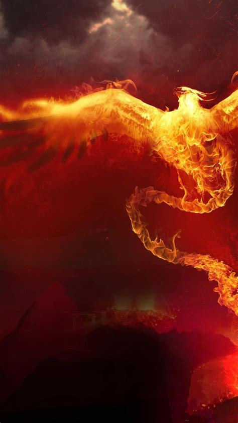 fire phoenix digital art artwork wallpaper