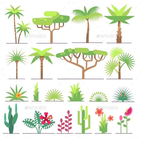 different types of tropical plants trees flowers by microvone graphicriver