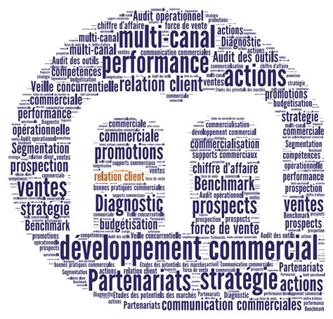 Cabinet De Conseil En Marketing by Cabinet Conseil Developpement Commercial