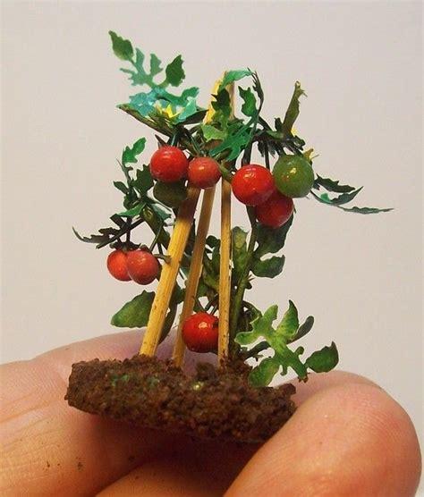 mini plants best 25 mini plants ideas on pinterest