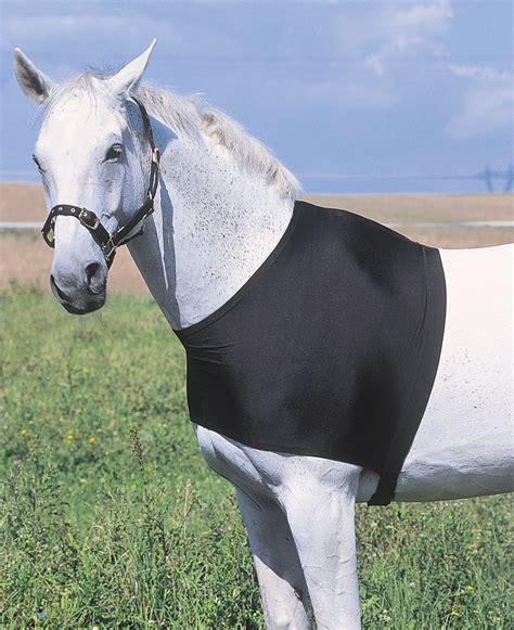 pferd decken decken schutz brustschutz und schulterschutz f 252 r pferd und