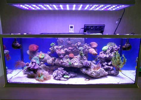 aquarium lunar led lights china dimmable 300w aquarium led light cree led light