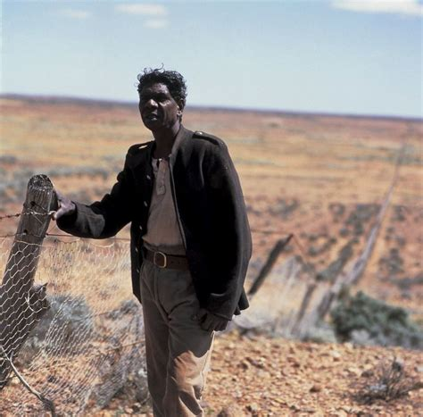themes in the film rabbit proof fence 49 best rabbit proof fence images on pinterest bunnies