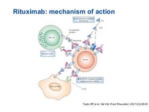 Blind Double Blind Rituximab As Induction Immunosuppression In Compatible