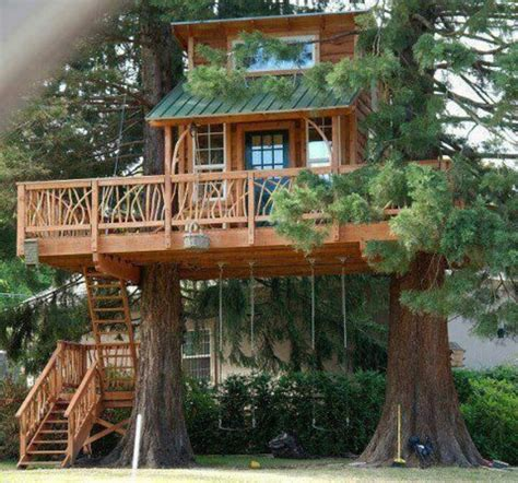 Banister Meaning Tree House Love It