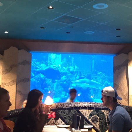 photo1.jpg picture of coral reef restaurant, orlando