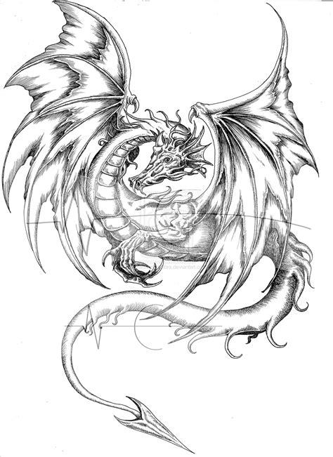 dragon tattoo drawing tattoos and designs page 34