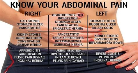 How To Detox Your Appendix by Did You That You Can Detox Your Through Your