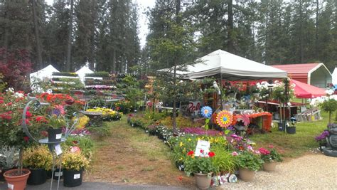 home and garden show archives nevada county fairgrounds