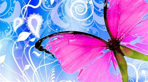 imagenes mariposas gratis fondos de pantalla gratis de mariposas imagenes de mariposas