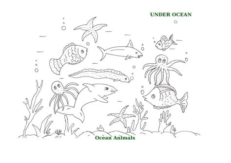 printable ocean animal pictures ocean animals printable coloring pages for kids 18
