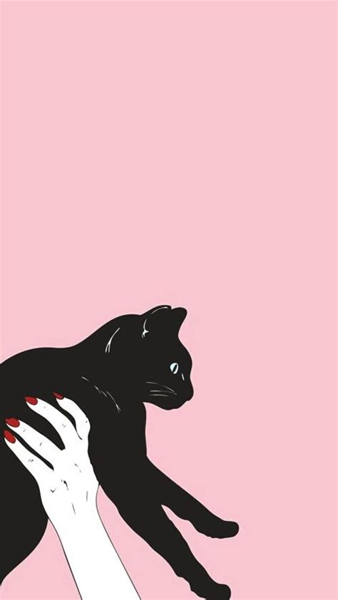 Cat Black Pink cat pink and black image backgrounds headers