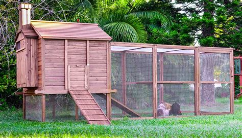 backyard chicken coops australia backyard chicken coops