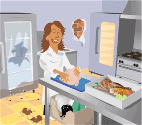 Exles Of Accidents In The Kitchen by Sources Of Physical Contamination